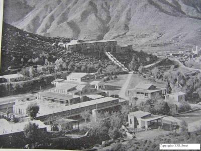 Saidu Sharif